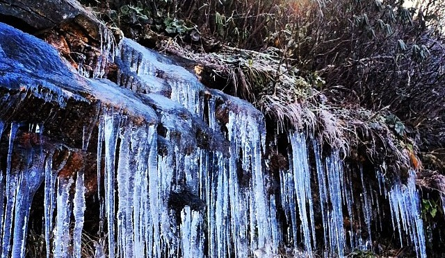 Land of the Sky: Early Icicles at Craggy Gardens
