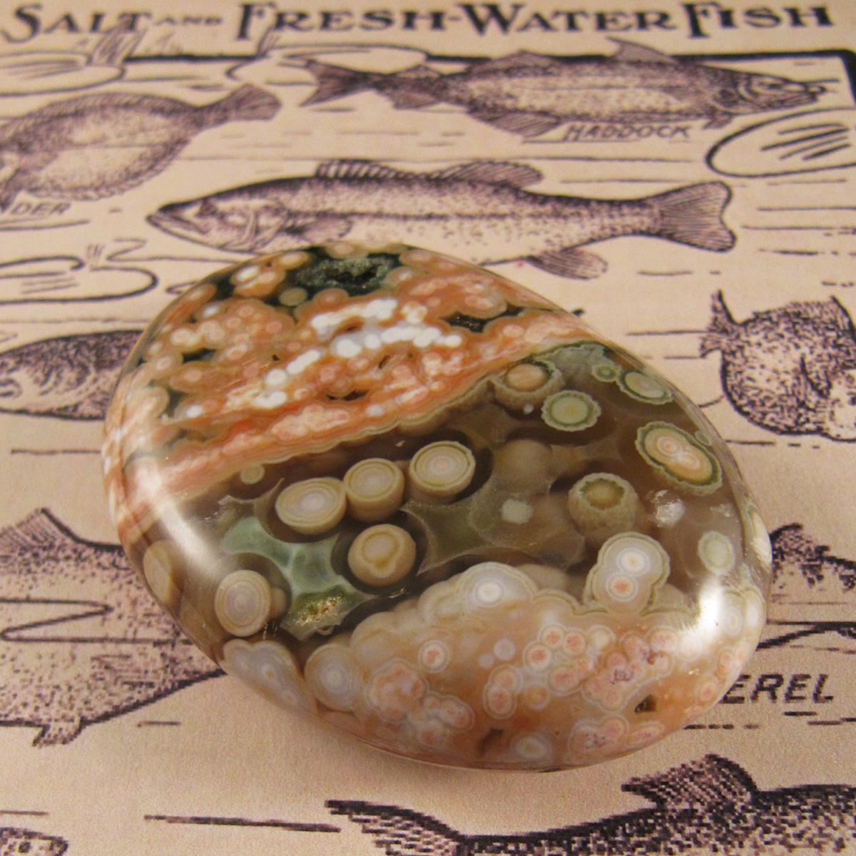 The Metaphysical Properties Of Ocean Jasper 174