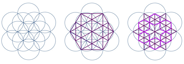 purplefloweroflifetemplate